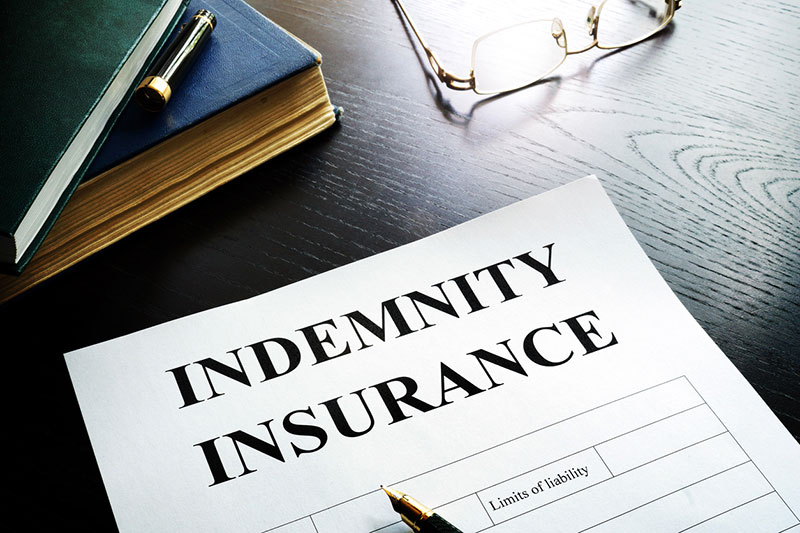 Indemnity Plans